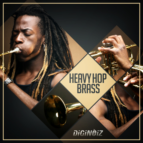 Diginoiz free brass loops